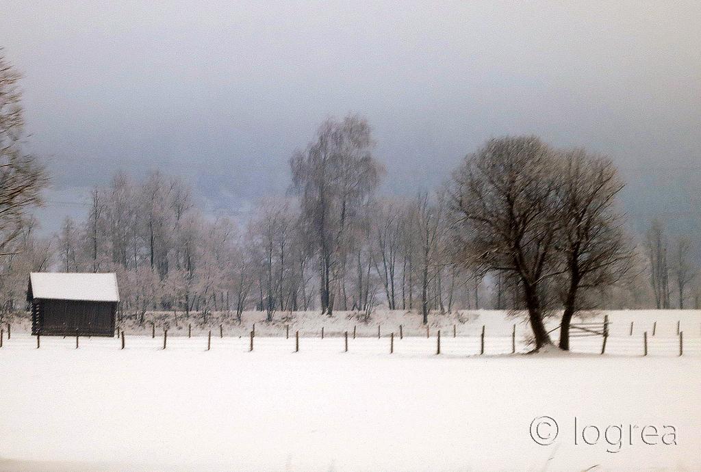 Fotos de Iogrea